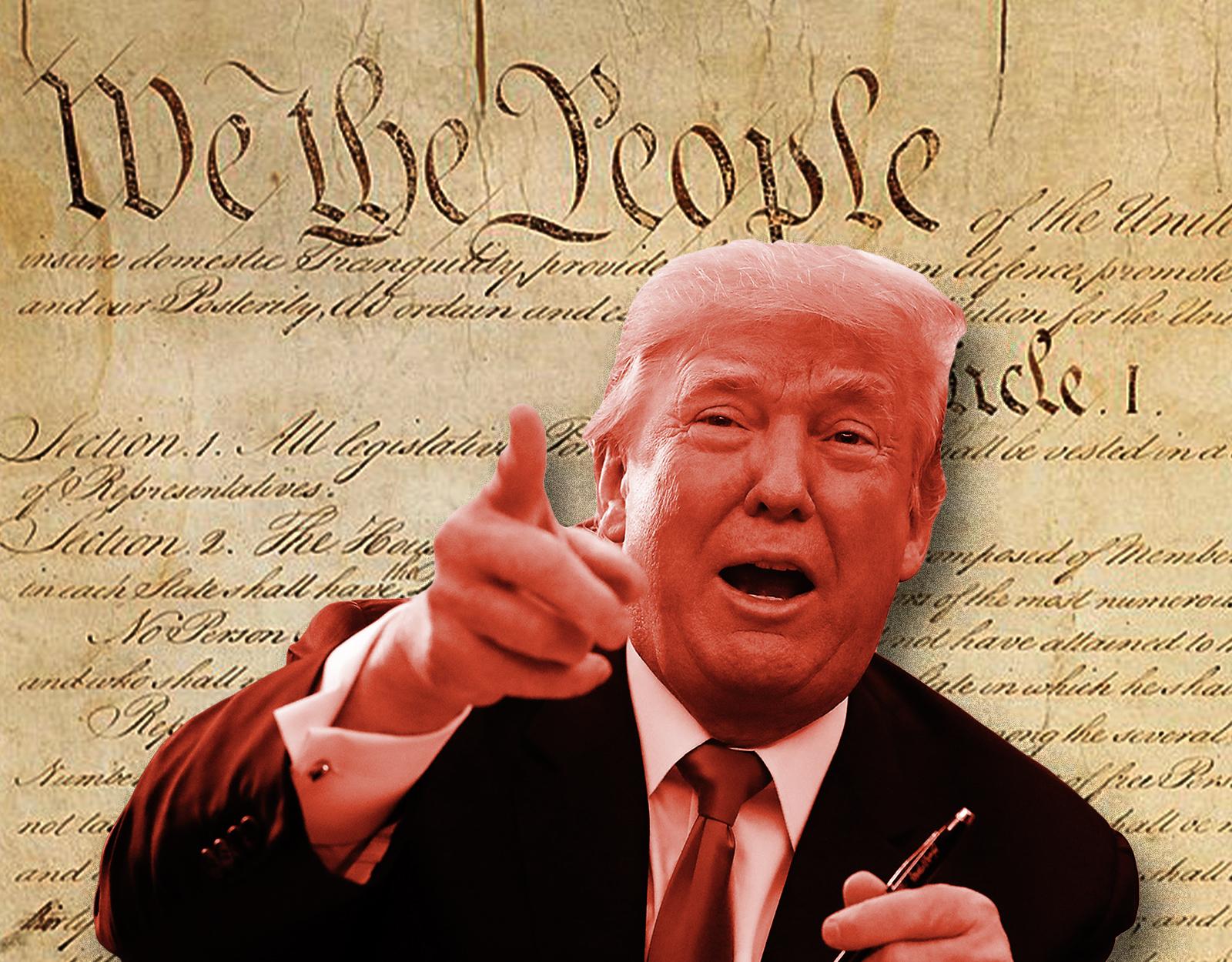 Donald Trump, Constitutional Ignoramus